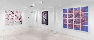 Korean Show, installation view