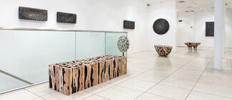 LEE JAEHYO | Nature Bound, installation view