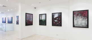 Neil Douglas   So it Goes, installation view