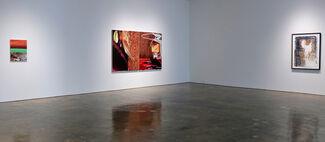 Pinkney Herbert | Arcadia, installation view