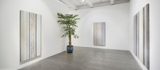 Lui Chun Kwong - Recent Works, installation view