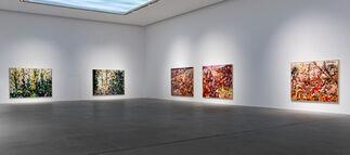 Marwan Sahmarani: Drifting Island, installation view