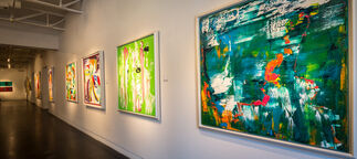 Lea Fisher: Unexpected Reflection, installation view