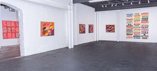 "Hock E Aye VI Edgar Heap of Birds: ""Do Not Dance For Pay"", installation view"