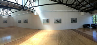 HELEN PYNOR - 'The Accidental Primate', installation view
