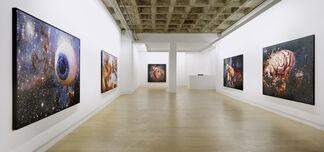 Christoph Steinmeyer - Bilder für Alle und Keinen., installation view