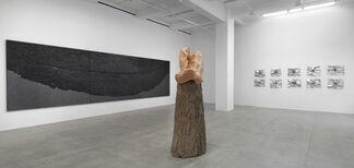 Giuseppe Penone:  Indistinti confini/ Indistinct Boundaries, installation view
