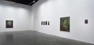 Ross Chisholm: Testament, installation view