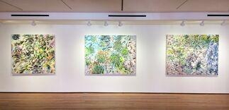 Naomie Kremer: Vantage, installation view