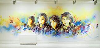 Language of the Wall: Graffiti / Street Art, installation view