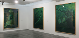 Jan Fabre. Tribute to Belgian Congo (2010–2013)/ Jan Fabre. Tribute to Hieronymus Bosch in Congo (2011–2013), installation view
