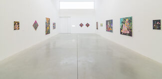 Amir H. Fallah // Wild Frontiers, installation view