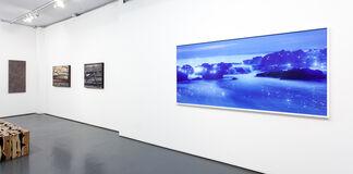 Lee Jeonglok | Parallel Worlds: Tree of Life & Nabi, installation view