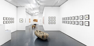 Dina Brodsky   Cycling Guide to Lilliput, installation view