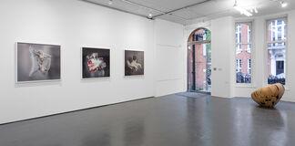 Jeff Robb | Nightfall, installation view