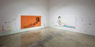 Private Residence, installation view