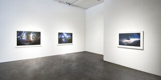 Out of View, installation view