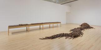 Anna Maria Maiolino, installation view