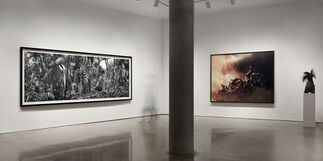 Simen Johan, installation view