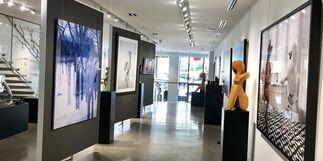 GREG LOTUS, installation view