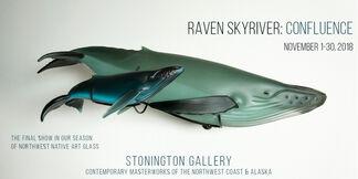 Raven Skyriver: Confluence, installation view