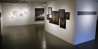 Vignettes, installation view