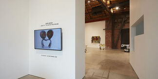 Don't F**k With The Mouse, installation view