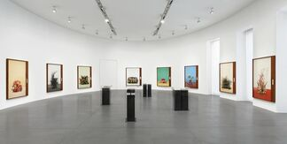 Taryn Simon: Paperwork and the Will of Capital, installation view
