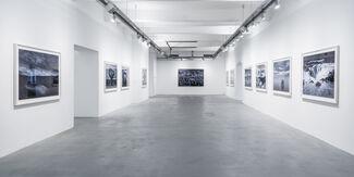 TOM JACOBI Awakening, installation view