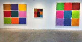 Ray Parker: The Nines, installation view