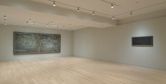 Hao Liang: Portraits and Wonders, installation view