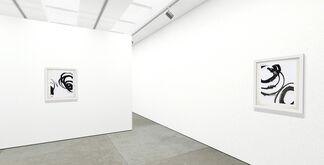 "Christopher Rico ""Lotan"", installation view"