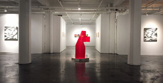 Geometric Complexions. Curated by Sergio Gomez, installation view