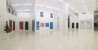 Mr A. Solo Show, installation view