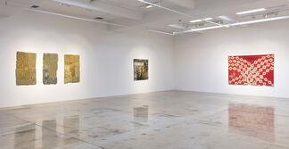 Aryana Minai: The Dirt That Binds Me, installation view