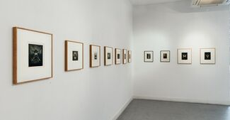 The Temptations of Pierre Molinier, installation view