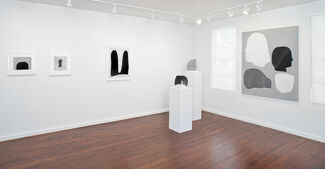 Amy Pleasant: Blink, installation view