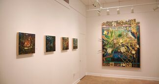 Beauty and Vulnerability, installation view