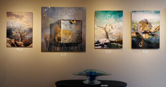 The Surreal Collection by Antal Goldfinger, installation view