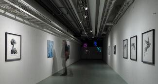Migration in the Anthropocene, installation view