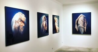 SILICON BASED CREATURES by Wolfgang Bohusch, installation view