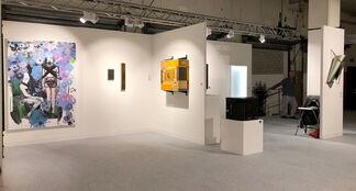 The Flat - Massimo Carasi at VOLTA14, installation view