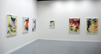 Chris Kahler: Dialumens, installation view
