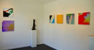 Susumu Kishihara: Intimate Nature, installation view