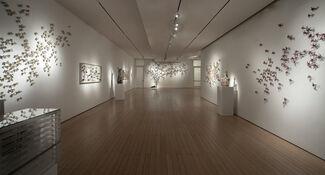 Bradley Sabin: New Work, installation view