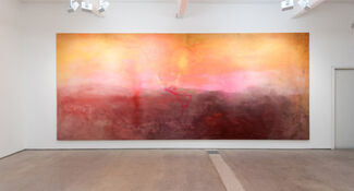Frank Bowling: The Map Paintings 1967-1971, installation view