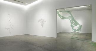 Maya Lin: Ebb and Flow, installation view