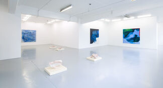 flipping birds and crushed oysters, installation view