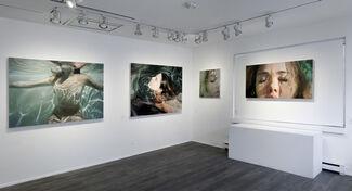 Reisha Perlmutter:  Immerse, installation view
