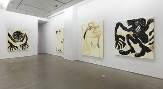 Ricardo Gonzalez: Rot Open in Bliss, installation view